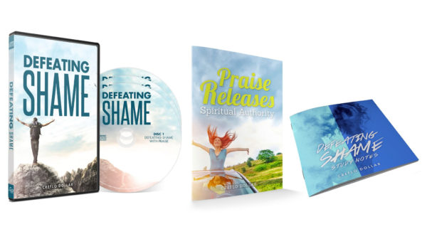 Defeating_Shame_Collection